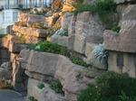 Pulhamite Rock