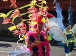 Carnival 15.01.2014
